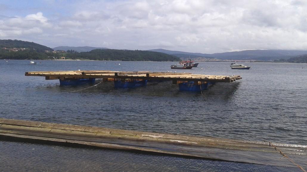 Batea Construida por Marousa